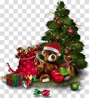 Árvore de Natal, árvore de Natal com urso de pelúcia, ilustração de árvore de Natal verde png