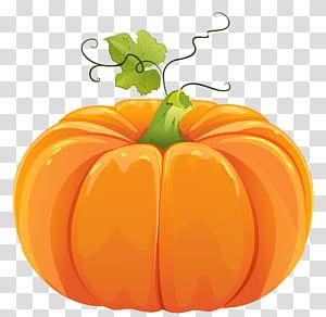 Abóbora, abóbora de outono, abóbora poster PNG clipart