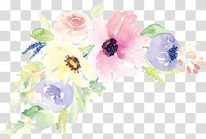 Design floral Pintura em aquarela Ilustração de flores, Flores em aquarela, ilustração de flores cor de rosa e brancas png