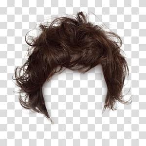 Cabelo comprido peruca penteado, cabelo preto, grampos de cabelo curtos para puxar peruca livre, marrom PNG clipart