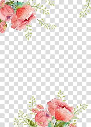 Flor de papel Pintura em aquarela, fundo de flores, pintura floral rosa png