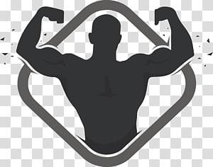ilustração de figura muscular, logotipo Musculação Academia de fitness físico, Design de etiqueta de fitness PNG clipart