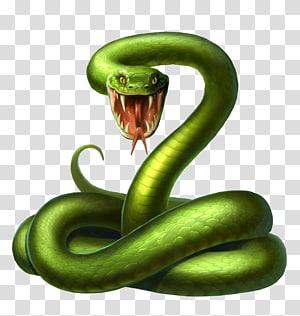 ilustração de cobra verde, ilustração de cobra Android, veneno de cobra verde PNG clipart