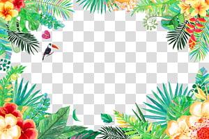 Trópicos Floresta tropical, flores e pássaros de verão, tucano e contorno floral fronteira ilustração png