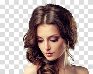 ilustração de cabelo castanho da mulher, penteado de salão de beleza de pente penteado, modelo de cabelo PNG clipart