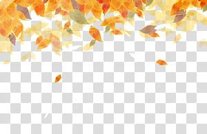 Autumn leaf color Cor da folha do outono Pintura em aquarela, folhas de outono em aquarela bonitas, folhas de laranja ilustração PNG clipart
