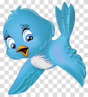 Cartoon de pássaro, grande pássaro azul Cartoon, ilustração de pássaro azul e branco png