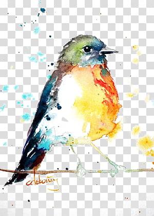 Pássaro robin europeu Pintura em aquarela desenho, pássaros, pintura de cor inversa de pássaro no galho png