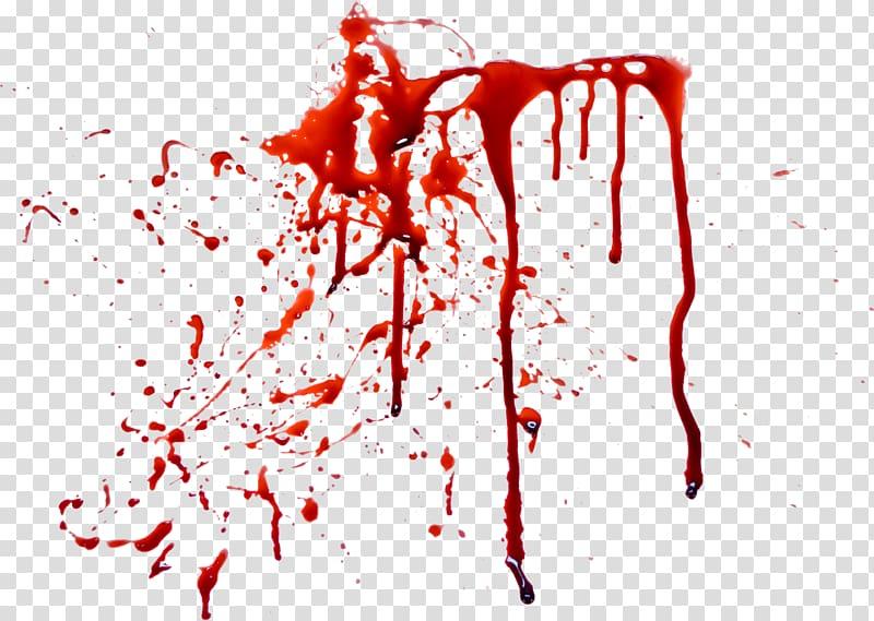mancha de sangue, sangue, sangue png