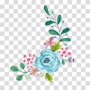 Flor euclidiana, aquarela de desenhos animados pintados à mão borda floral, pintura de flores PNG clipart