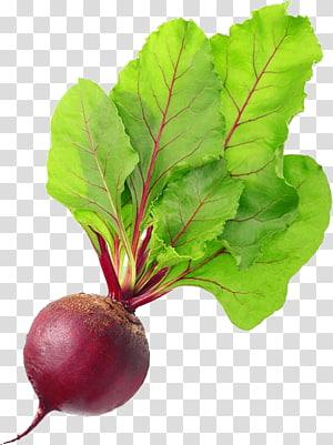 ilustração de cebola vermelha, acelga beterraba comida vegetal cozinha vegetariana, beterraba PNG clipart