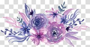 Aquarela pintura flor roxa, aquarela flores roxas, ilustração de flores roxas e rosa png