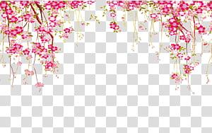 Flor euclidiana, fronteira de flor, ilustração de flores de pétalas de rosa png