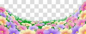 Flor, grama com lindas flores, flores multicoloridas png