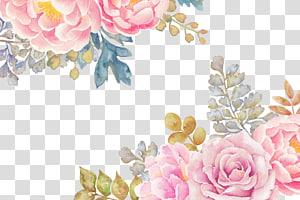Pintura em Aquarela Ilustração de flores, flores, rosa e amarelo png