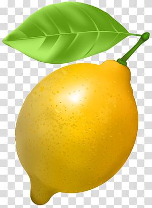 Limão, limão, amarelo limão frutas arte gráfica png