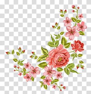 Flor, flor de canto, flores cor de rosa png