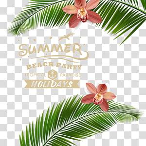 férias de paraíso tropical de festa de praia de verão, cartaz de praia, material de verão Beach Resort pôsteres PNG clipart