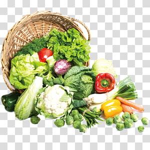 ilustração de legumes, brócolis vegetais alimentos Napa repolho couve chinesa, legumes orgânicos grátis fivela material PNG clipart