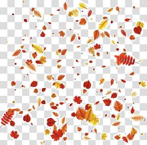 folhas de outono caindo, pétala Floral design laranja padrão, folhas de outono caindo PNG clipart