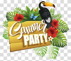 folheto de propaganda de festa de verão, cartaz de verão festa flyer, festa de verão PNG clipart