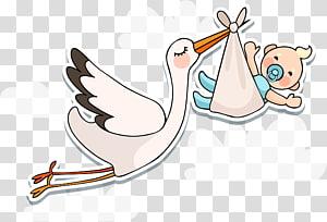 Cegonha-branca Infantil Chá de bebê, o bebê está chegando PNG clipart