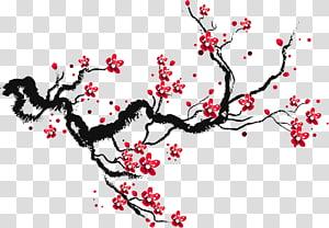 Esboço do papel de desenho da flor de cerejeira, flores de cerejeira de tinta, flores de cerejeira vermelhas png