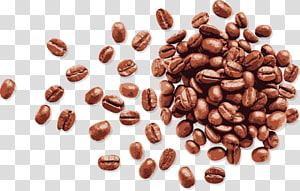 lote de grãos, café em grão Espresso, grãos de café pintados à mão png