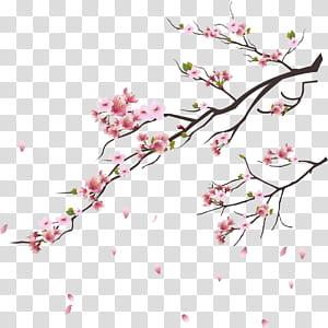 Tsukasa da flor de cerejeira do ramo de Tóquio, flores de cerejeira rosa, ilustração de flores de cerejeira rosa png