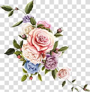 Flor Design floral Rose Desenho, flor bonita, arte da flor verde e rosa png
