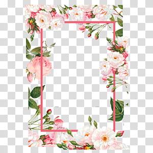Flor, bordas de flores cor de rosa, ilustração de borda floral rosa e verde png