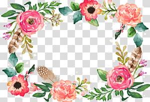 Pintura em aquarela Ilustração de flor, borda de flor, ilustração de quadro de flores vermelhas e rosa png