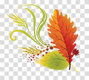 Ilustração de folhas de outono cor folhas, folhas de outono, laranja e verde PNG clipart