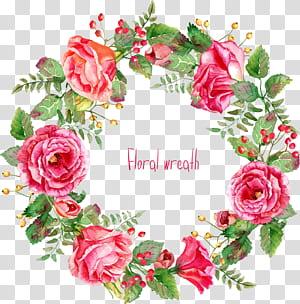 Flores cor de rosa euclidiana, lindamente, pintou a borda da coroa de flores, grinalda floral rosa png