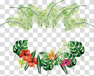 Ícone de rosa euclidiana de flor, borda de garrafa Tropical aquarela, fundo azul com flores e folhas de cores sortidas e verdes png