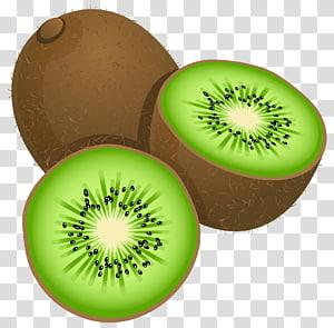 Kiwi, grande pintado Kiwi Frut, ilustração de fruta kiwi png
