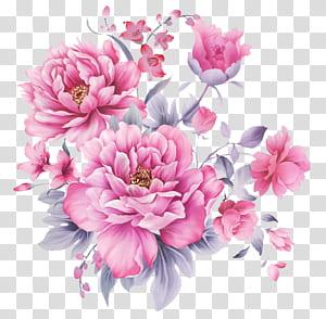 Design floral Flor, lindos padrões florais pintados à mão, peônias cor de rosa png