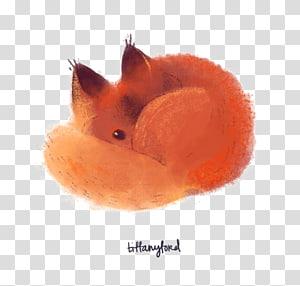 ilustração de raposa laranja, raposa vermelha desenho de gato, raposa png
