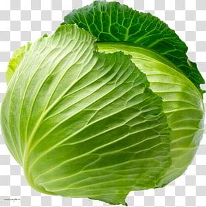 repolho verde, couve-flor repolho roxo repolho branco repolho de Savoy vegetal, repolho png