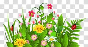 Flor, grama bonito e flores, ilustração de flores de pétalas amarelas, rosa e brancas png