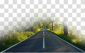 de estrada de concreto preto e branco durante o dia, Highway Highway, Forest road png