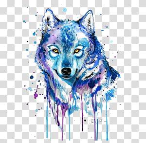 Lobo cinzento tatuagem pintura em aquarela desenho, lobo abstrato, pintura lobo azul e roxo png