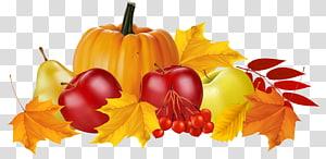abóbora entre ilustração de maçãs e peras, outono, abóbora de outono e frutas PNG clipart