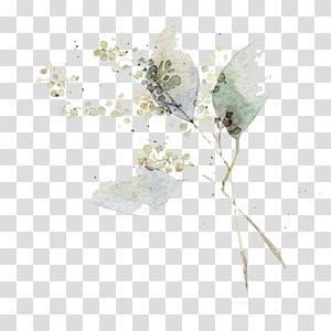 Pintura em aquarela Flower Art Illustration, folhas em aquarela, pintura floral branca png