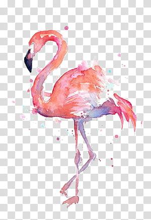 T-shirt Papel Flamingo Pintura em Aquarela Gravura, Desenho Flamingos, Pintura Flamingo png