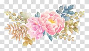 Pintura em aquarela flor, peônia flor aquarela pintada elementos florais, peônia rosa flores pintura PNG clipart
