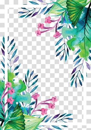 Euclidiana, verão planta aquarela pintados à mão fronteira, pintura de moldura de flores PNG clipart