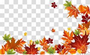 ilustração de fronteira de folhas marrons, laranja e verdes, cor de folha de outono Cor de folha de outono euclidiana, fundo de folhas de outono PNG clipart