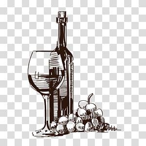 ainda vida, ilustração, vinho tinto, champanhe, uva, rosxe9, artwork, copo, vermelho, vinho png