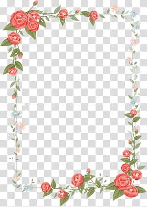Fronteira de flores Design floral, moldura rosa, ilustração de quadro floral vermelho, branco e verde png